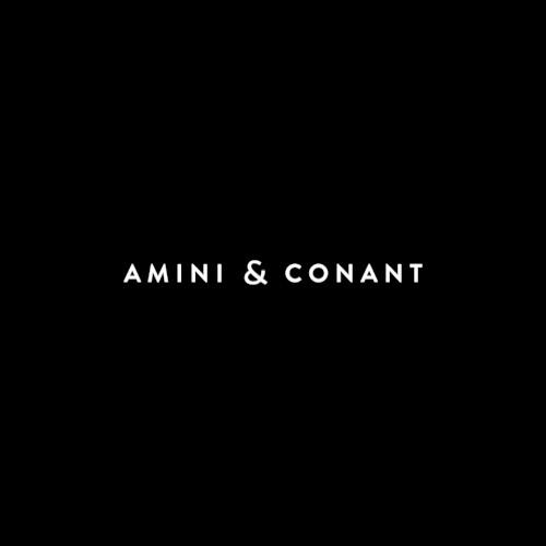 Amini & Conant, LLP Profile Picture
